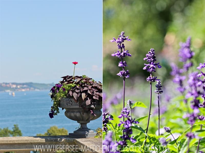 Blumeninsel Mainau-41-horz