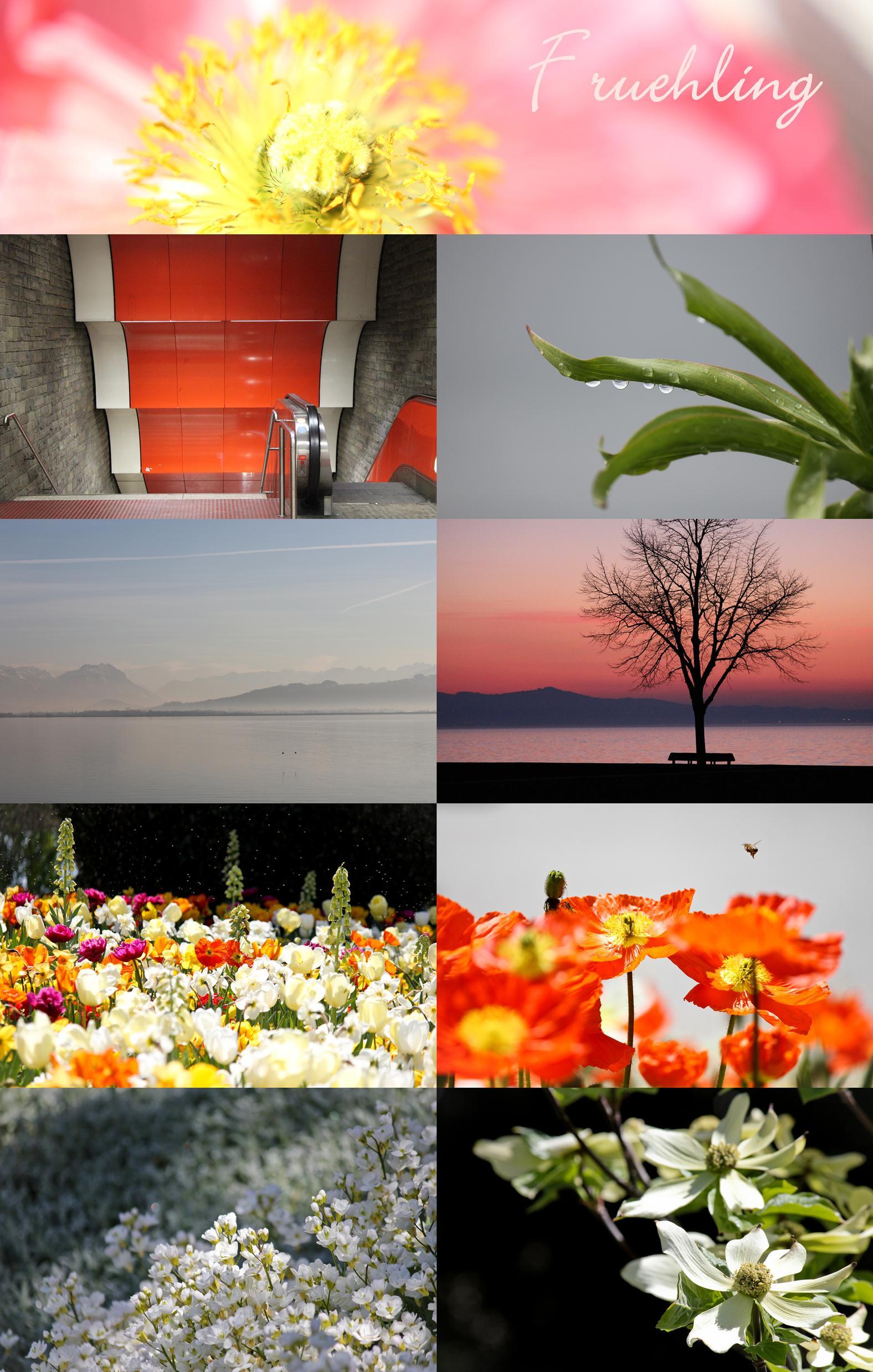 01 Frühling