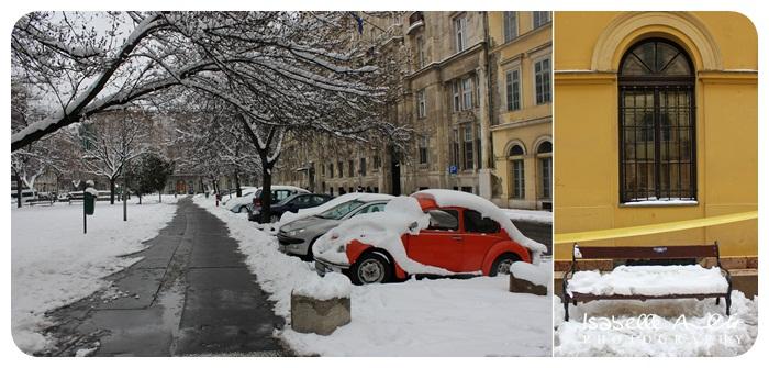 Kombi Snow 2