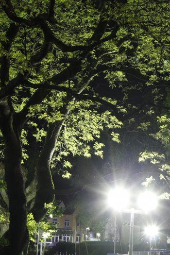 Überlingen bei Nacht