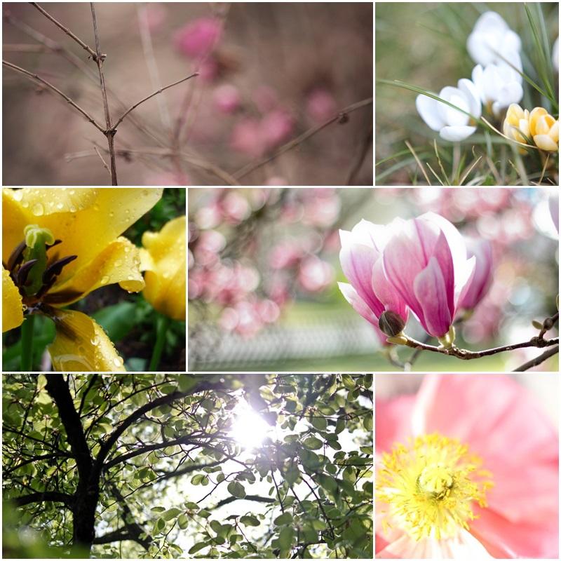 Hello Spring Frühlingsbild Blumen ÜberSee Mädchen