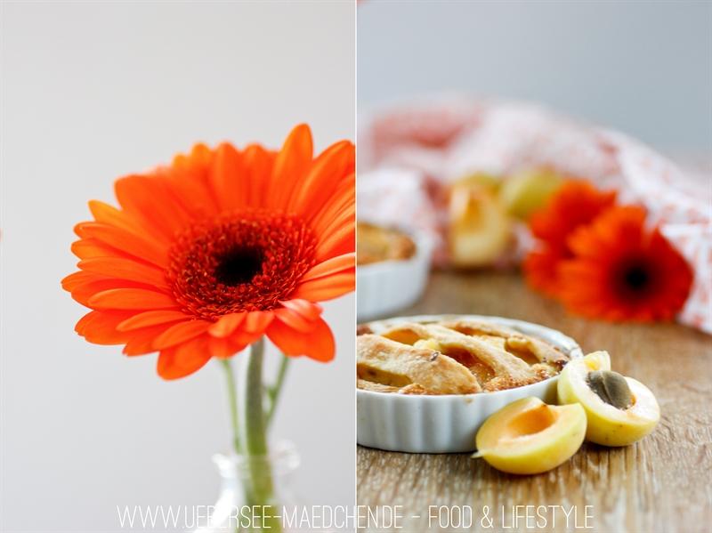 Tartelette mit sommerlichen Früchten: Aprikosen
