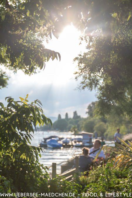 So schön ist der Bodensee! Tipps zu Sehenswürdigkeiten in und um Konstanz
