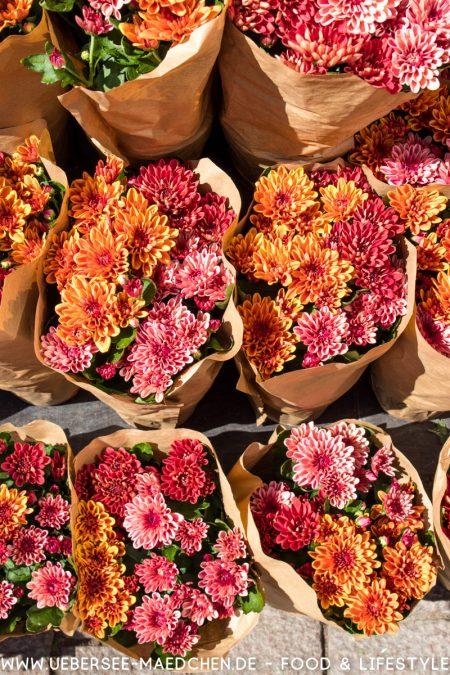 Potsdam Innenstadt Blumenstand von ÜberSee-Mädchen Foodblog vom Bodensee Überlingen-17