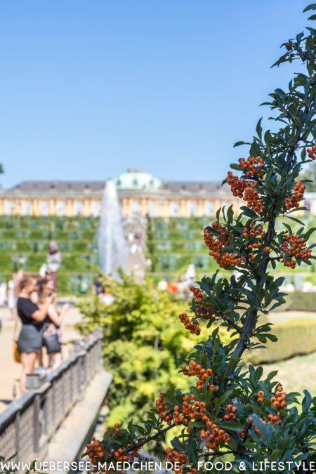Potsdam Schloss Sanssouci von ÜberSee-Mädchen Foodblog vom Bodensee Überlingen-17