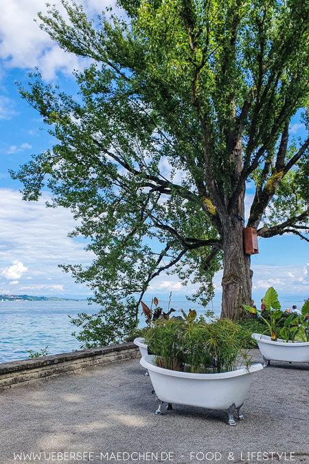 Bepflanzte Badewannen auf der Blumeninsel Mainau Konstanz-Reisetipps vom ÜberSee-Mädchen