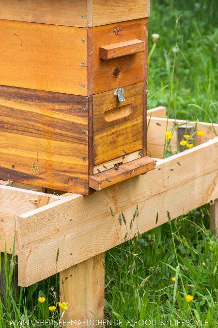 Ein Bienenstock bei der LGS Überlingen
