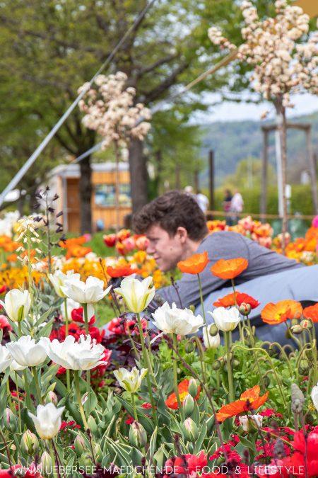 Blumenmeer bei der Landesgartenschau in Überlingen