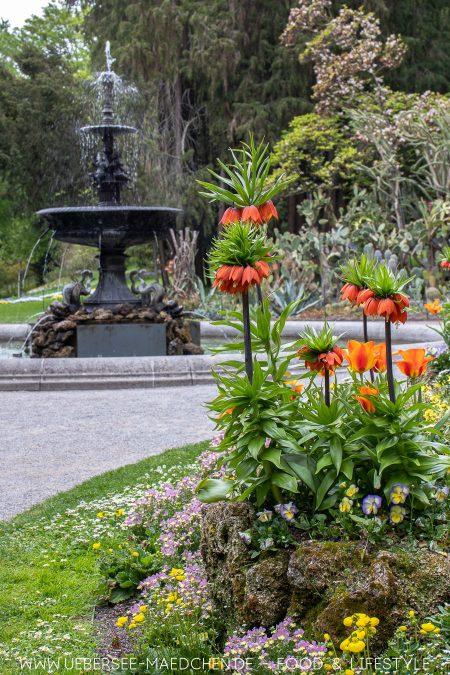 Überlinger Stadtgarten mit Brunnen