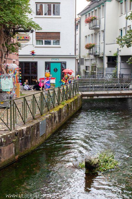 Ein Krokodil in Freiburgs Gerberau