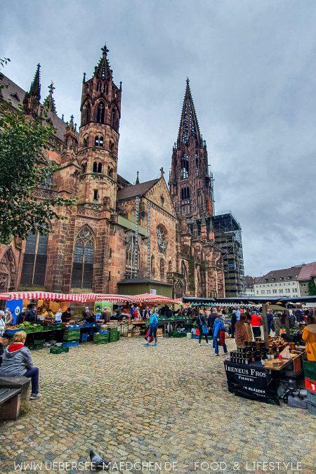 Entdeckertour über Münstermarkt in Freiburg